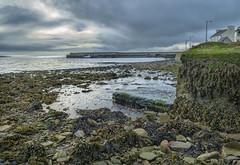 Cappa Pier, Kilrush, Co Clare, Ireland (irishman67) Tags: pier countyclare cappa kilrush ireland sea seascape seaweed winter clouds