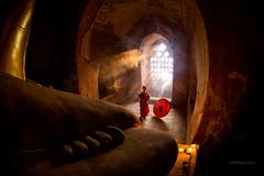 Buddhist novice praying - IMG_7688 (trai_thang1211) Tags: burma myanmar buddhistnovice novice monk monks myanmarburma myanma praying buddhism buddha rays sunny sunnyafternoon windowlighting umbrella mandalayregion mm