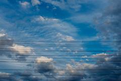 Bird on a Wire, 2017 (James Banko Photography) Tags: bird minimal minimalist sky blue blueskies clouds wire melbournephotographer melbourne australia beautiful x100t x100 fujifilm outdoors lightroom lines