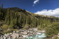 Along the river (Joost10000) Tags: karkarariver kyrgyzstan kazakhstan centralasia asia mountians forrest river stream water wild wilderness nature scenic outdoors natur natura canon canon5d eos trees tree beauty border