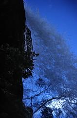 Norwegen 1998 (088) Steinsdalsfossen (Rüdiger Stehn) Tags: landschaft natur dia slide analogfilm scan canoscan8800f europa norwegen norge norway nordeuropa skandinavien diapositivfilm kleinbild analog kbfilm 35mm urlaub reisefoto reise contax137md 1990s 1998 1990er hordaland wasserfall wasser flus hardanger norheimsund