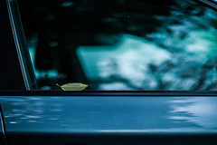 a letter from tree (N.sino) Tags: m9 summilux50mm leaf letter window car bmw 葉っぱ 手紙 車 窓