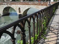fence and bridge (Hayashina) Tags: fence bridge italia river italy verona shadow