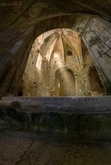 20 de marzo de 1596 / march 20, 1596 (Miguel Angel Avi) Tags: 20 marzo 1596 march tumba lapida tomb monasterio monastery rioseco abandono abandon ruins luz gotico gotic sepultura arco ojival burgos castilla y leon españa spain