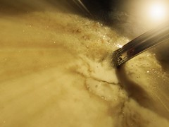 Porridge (catherine329) Tags: macromondays porridge wet food nikoncoolpix macro