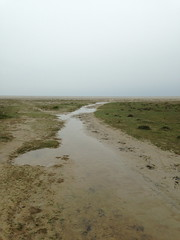 after the flood (emma2thomas) Tags: beach island schiermonnikoog eiland seawater slenk aftertheflood emmathomas