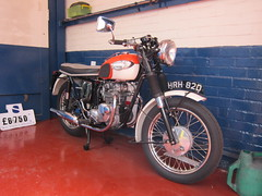 Triumph Speed Twin (Lady Wulfrun) Tags: 1966 triumph motorcycle speedtwin triumphspeedtwin hrh62d