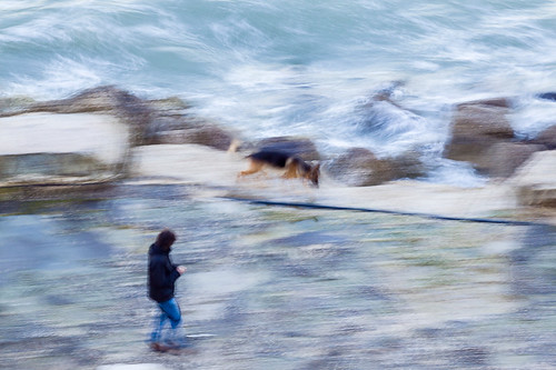 Panning - Acquerello Marino (con cane) - Panning