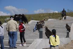 The falconer (WhatsAllThisThen) Tags: bird statue golden eagle mongolia vulture equestrian chinggiskhan