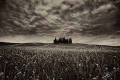 San Quirico d'Orcia (Jurjen Harmsma Photography) Tags: travel flowers trees light italy travelling nature clouds spring europe skies may wideangle countries views tuscany fields siena toscane italie perfection 2013 jurjenharmsma