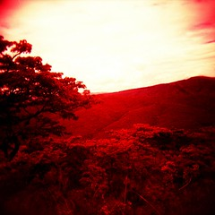 Somewhere in AFRICA (VERY GIORGIOUS) Tags: africa film holga lomo xpro lomography cross slide oasis velvia processed overland