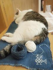 (textile practice) Tags: birds indigo stitching karelia