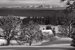 La Vue des Alpes , Canton of Neuchtel. February 10, 2013. No. 32198. (Izakigur) Tags: schnee winter snow mountains alps les alpes landscape liberty schweiz switzerland nc nikon europa europe flickr suisse suiza swiss feel ne jura neige alpen helvetia nikkor svizzera neuchatel neuchtel lepetitprince ch dieschweiz musictomyeyes sussa suizo chauxdefonds romandie swissromande lachauxdefonds myswitzerland lavuedesalpes lasuisse   cantondeneuchtel d700 nikond700 nikkor2470f28 nikkor2470 izakigur nikon2470f28 nikon2470mmf28g cantonofneuchatel suisia laventuresuisse izakiguralps izakigurjura izakigurd700 izakigur2013