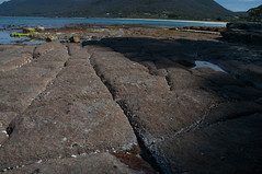 Checkerboard (MrBlackSun) Tags: neck coast nikon oz australia tasmania aussie tas tasman tassie peninsula d300 tessellatedpavement eaglehawkneck tasmanpeninsula eaglehawk nikond300 southtasmania