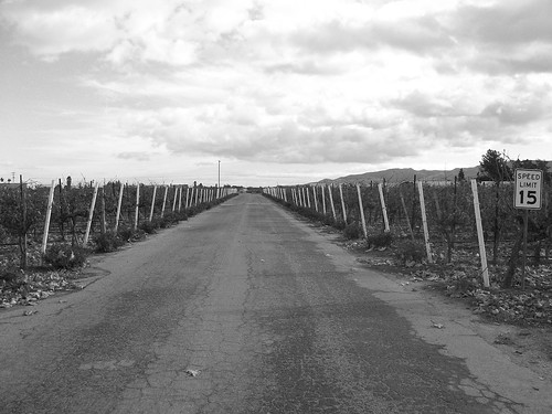 Jekel Vineyards Road