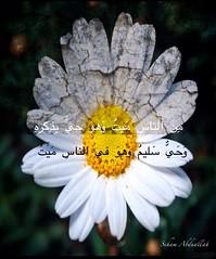 A Poem (nooralkalemat) Tags: life poetry poem live muslim islam religion poet be moral sins   dunia       athkar    arabiclanguage