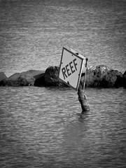 Reef (Julien_V) Tags: usa sign hawaii maui reef panneau hawa rcif