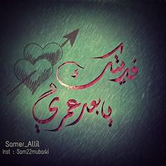 Sam photographer ( ) Tags: me rose follow jeddah followme           flickrandroidapp:filter=mammoth