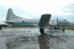 DSC_0195e (Proplinerman) Tags: aircraft airliner convair propliner opalocka convairliner n41527