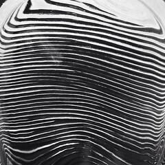 celebrity fingerprint