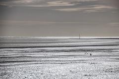 The shimmery shiny sea (Eiona R. [back in a bit ]) Tags: ferryside wales unitedkingdom gb llanstephan wfc contrejoure