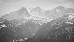 Eiger, Mönch, Jungfrau (Fabio Stoll) Tags: eiger mönch jungfrau switzerland swissmountains alps alpe alpen niederhorn
