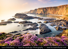 UK - England - Devon - Hartland Quay & its dramatic coastline with Sea Pink or Purple Sea Thrift Flower in bloom (© Lucie Debelkova / www.luciedebelkova.com) Tags: hartlandquay devon england anglie uk unitedkingdom greatbritain gb british europe eu evropa britishisles west western island britain english bay beach isles coastal coastline coast erosion european great horizontal ocean seacoast sea seaside travel nobody outdoors motion blur nature dusk rural scene idyllic tranquil horizon over water surf natural rock formation scenics beauty seascape sunset scenic vista view panorama beautiful exploration magiclight light landschaft landscape wwwluciedebelkovacom luciedebelkova shore cliff