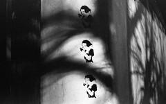 Street art & Trees at night (Amelien (Fr)) Tags: 147 2017 400 40mm aor analog argentique believeinfilm cl capturedonrealfilm dilutione epson film fuji fujifilm hc110 leica neopan pellicule summicron summicronc blackandwhite bw filmisnotdead homescanned monochrome nb noiretblanc v550