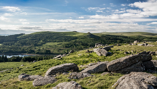 On Sheeps Tor - Dartmoor_NK2_2249