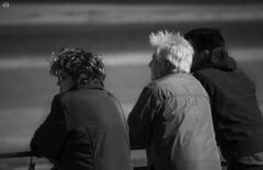 Contemplando las vistas de la Bahía de San Vicente de la Barquera (SergioCastroPhotography.) Tags: españa spain cantabria norte north mar sea olas nature color colores bn blancoynegro birds bw barco boat gaudi comillas santillana puerto viaje sonyrx10 sky sony sunset sun sonyrx10mark3 sonyrx10markiii sonyrx10m3 street sol fotografía follow followme fotógrafo foto follow4follow fly photography photo photographer paisaje profesional landscape like