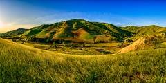 Golden Grass (stuanderson7) Tags: grass sunrise nature mountains outdoor hills clouds morning trees california panorama sky green landscape vibrant sonya6000 samyang12mmf2