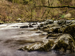 Flow (Rabster Rewired) Tags: gx1 panasonic lightroom scotland thehermitage pitlochry dunkeld water river