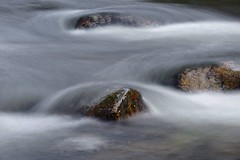 Dessin d'eau (Marc ALMECIJA) Tags: eau water wasser aqua natur nature rivière river agout tarn long exposure pose longue filé sony rx10
