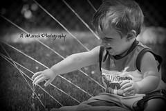 sam sprinkler fun (angiemorash) Tags: toddler boy sam water play yard summer sprinkler happy smile