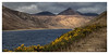 Slieve Muck {maybe} (Deek Wilson) Tags: silentvalley reservoir mournemountains themournes northernirelandlandscape countydown newcastle kilkeel canon7dmkii landscape northernireland