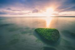 Sunrise baltic sea (ChrisRBN) Tags: sea ocean water baltic sunrise sunset sunshine long exposure ndfilter filter 1635 sony sonyalpha a7ii a7 a7rii a9 zeiss sun sky blue purple wasser see ostsee meer strand beach rock stein green sweet wonderfull