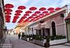 Karlovac, Croatia - Red umbrellas