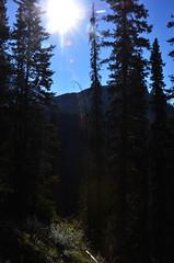 Ink Pots Trees Sun (pokoroto) Tags: ink pots sun アルバータ州 alberta canada カナダ 8月 八月 葉月 hachigatsu hazuki leafmonth 2016 平成28年 summer august