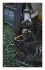 Missabotti - NSW (marcel.rodrigue) Tags: missabotti nsw newsouthwales midnorthcoast australia bush marcelrodrigue jkamidnorthcoast nature nambuccavalley nambuccascenery