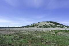 DSC06776 (rmajeed786) Tags: hill nature grass bliss background wallpaper scenic trees forest blue sky day bright sunny