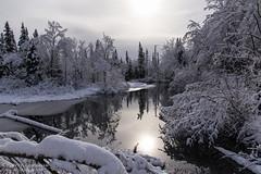 Matin calme / Quiet morning (Pierre Lemieux) Tags: stonehamettewkesbury québec canada maraisdunord eau water snow neige landscape winter hiver