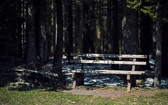 Last sitting opportunity in front of the Black Forest (Andreas Mezger - Art Photography) Tags: bank forest woods germany south blackforest dark sunny shadow
