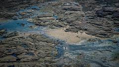 Lonely walk (Grégoire Parker) Tags: nikon d5300 walk marche lonely seule gatteville normandie france view landscape vue paysage phare lighthouse sea mer man homme beach plage sand sable roc roche