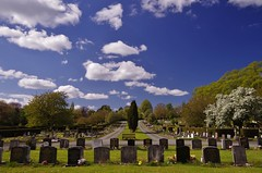 Graves spread out (Sundornvic) Tags: path road trees green blue sun shine shrewsburycemetery longden coleham sky clouds grass graves burial