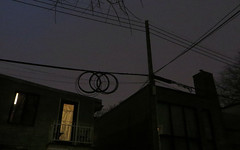 De fil en aiguille (Robert Saucier) Tags: montréal montreal nuit night nightshot noflash fenêtre window poteau fil wire arbre tree img8293