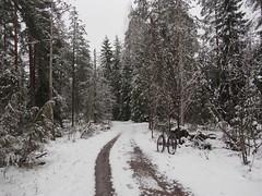 2017 Bike 180: Day 87, April 30 (olmofin) Tags: 2017bike180 finland bicycle snow lumi spring polkupyörä keskuspuisto central park