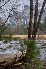 Marvelous Things (AgarwalArun) Tags: landscape scenic nature views mountains cliffs yosemite yosemitenationalpark nationalpark granitecliffs elcapitan sierranevada californiapark halfdome snowpeaks snow sony7m2 sonyilce7m2 waterfall mercedriver