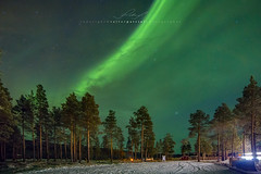 Northern lights (Valter Patrial) Tags: northern lights luzes do norte arctic ártico
