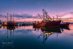 Viking Village - Barnegat Light, NJ (Dante Fratto Photography) Tags: barneget barnegetinlet barnegetlight boatdock boats fishingboats fishingvessels vikingvillage sunset wwwdantefrattocom wwwdantefrattophotographycom