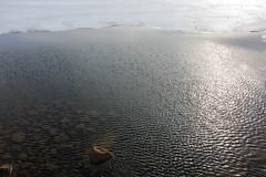 Iceland #37 (Art-is-true) Tags: iceland islande art is true photography travel travelling black white landscape golden circle geyser cascade reykjavik photo canon